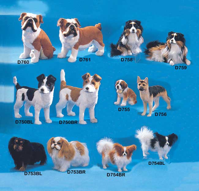 Click here to see more dog breeds