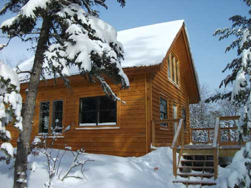 For Rent Remote Cabin Near Bwca Ely Mn